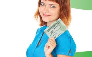 Порядок проверки СНИЛС онлайн по базе Пенсионного фонда