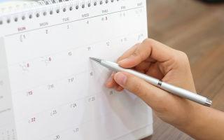 Сколько дней за год можно брать за свой счет