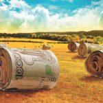 Оплата труда женщин, работающих в сельской местности